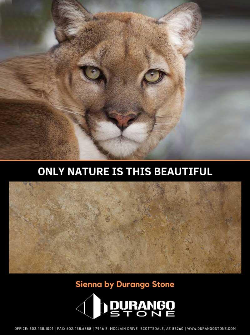 Durango Stone Sienna