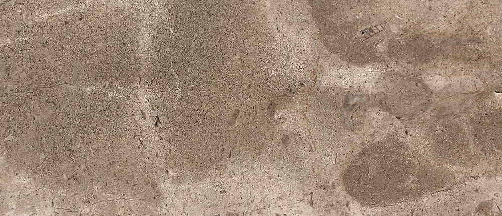 Durango Stone Tortuga